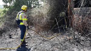L'incendi dels Pallaresos ha cremat cairebé una hectàrea de massa forestal