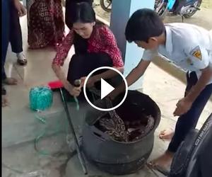 Puta Yan, la mestra indonèsia que ha atrapat una serp al pati de la seva escola