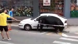 Un bou envesteix un cotxe i una moto durant la Festa Major a Amposta