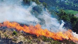 11 mitjans aeris i 23 dotacions treballen per apagar el foc.