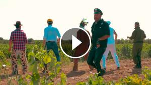 A Vendimiar, el vídeo de l'humorista Agustín Duran