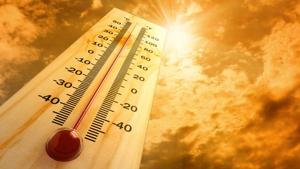 Aquests propers dies seran els de més calor del que portem d'any