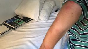 Denuncien picades de puça durant el trajecte d'un avió de Vueling Atenes-Barcelona