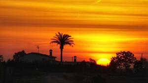 Dia de ple estiu aquest dimarts a gran part de Catalunya