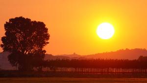 El sol dominarà en conjunt aquest dimarts