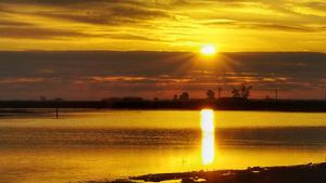 Sortida de sol al Delta de l'Ebre aquest diumenge