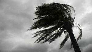 El temporal de vent afectarà molts punts de Catalunya dimecres