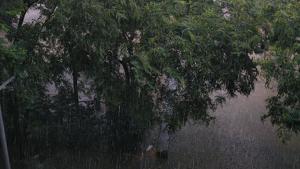 Els Bombers han realitzat una trentena de serveis a causa de les fortes pluges