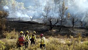 Fins a 17 dotacions dels Bombers han treballat en l'incendi