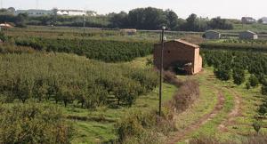 Imatge de l'Horta de Lleida