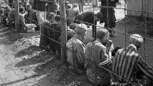 Imatge del camp de concentració de Bergen Belsen