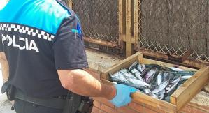 La policia de Cunit, amb el peix decomissat.