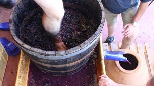 La URV investiga com era el vi dels ibers