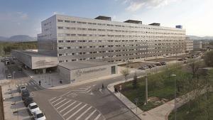 Los cuatro heridos han tenido que ser trasladados al Hospital San Pedro de Logroño