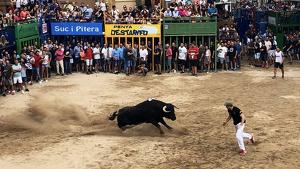 Un moment del 'bou al carrer' este dissabte en l'Alcora