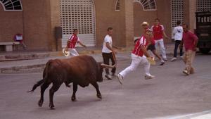 Una imatge d'arxiu d'una solta de bou de la Penya Bac en Llíria