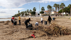 Estudiants de l'IES Baix Camp, ajudant a netejar les platges de Cambrils, encara amb brutícia dies després del temporal d'aigua