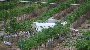Imatge de l'avioneta accidentada, entre les vinyes properes del Mas Gatell