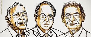 La imatge feta pública pel comitè Nobel per anunciar els guanyadors del premi de Química d'enguany