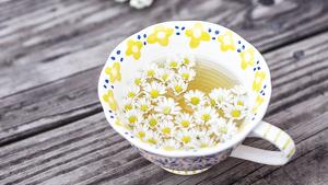 La manzanilla tiene propiedades digestivas, relajantes y antiinflamatorias.