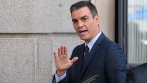 Pedro Sánchez entrant al Congrés dels Diputats