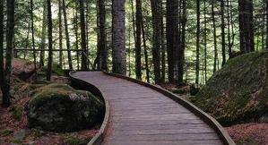 Pla general d'una passarel·la adaptades per persones amb mobilitat reduïda