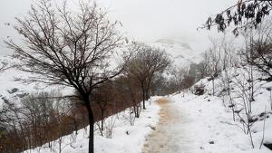 Aquesta serà l'estampa que deixarà la nova nevada d'aquesta matinada a molts sectors del vessant nord del Pirineu