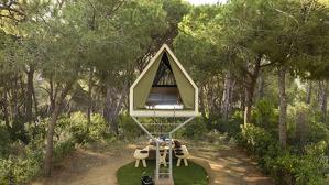 Arriben les cabanyes als arbres a Barcelona