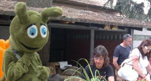 El Banyetes clou el programa Natura als Parcs cultivant plantes aromàtiques