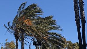 El vent serà destacable aquest diumenge a molts punts del centre i sud de Catalunya