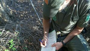 Els Agents Rurals, revisant la zona on s'han trobat set cadàvers de cigonya
