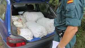 Imatge d'arxiu de la Guàrdia Civil després d'intervenir un vehicle amb sacs de garrofes recollides sense permís
