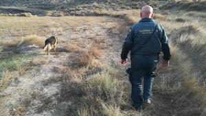 La Guardia Civil y Protección Civil han participado en la búsqueda de la mujer desaparecida
