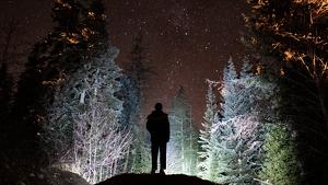 La pluja d'estels no ha complert les expectatives