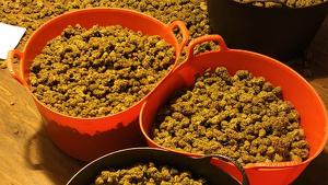 Marihuana valorada