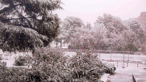Nevada del 21 de novembre de 1999 davant la Facultat de Físiques de la Universitat de Barcelona.