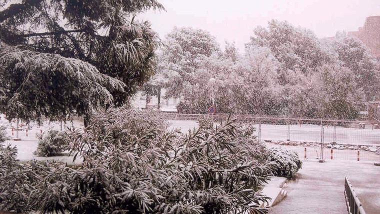 La nevada de 1999 en la Facultad de Físicas (Palau Reial)