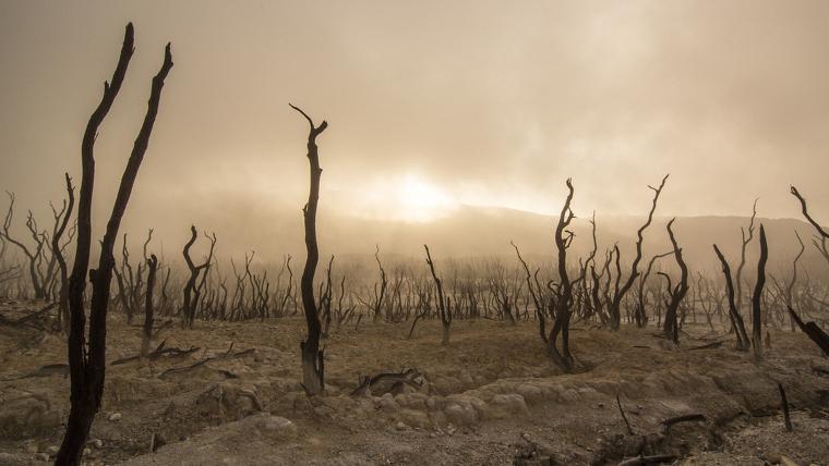 La Península se encuentra con el 75% de su extensión en peligro de desertificación