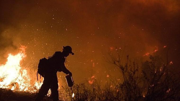 Un bombero lucha contra las llamas de un incendio forestal