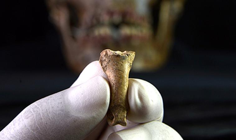 Urpa d'àguila del collaret nenadertal trobat a Calafell