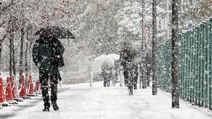 Imatge d'una nevada en una ciutat