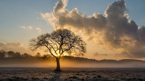 Imagen de una mañana fría con brumas y algunas nubes