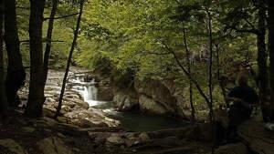 Imagen de un bosque y un río en un parque natural español