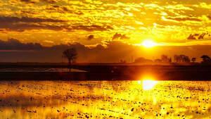 Imatge d'una sortida de sol rogenca al Delta de l'Ebre