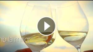 La DO Penedès presenta un vídeo per animar a consumir els seus vins des de casa