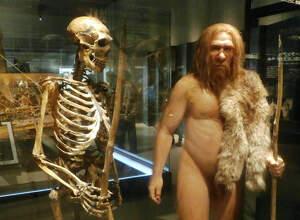 Esquelet i reproducció home de Neandertal al Museu Nacional de Ciència i Natura de Tòquio (Japó)