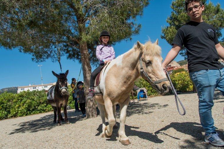 Els nens i nenes podran gaudir també amb els passejos en poni.