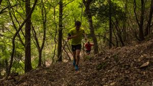 La Cursa de muntanya de Falset arriba a la 10a edició