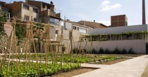 Imatge de l'hort ecològic del Museu de la Vida Rural de l'Espluga de Francolí.