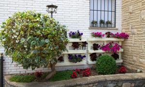 Imatge d'na de les composicions guanyadores del concurs de guarniment de terrasses i balcons.
